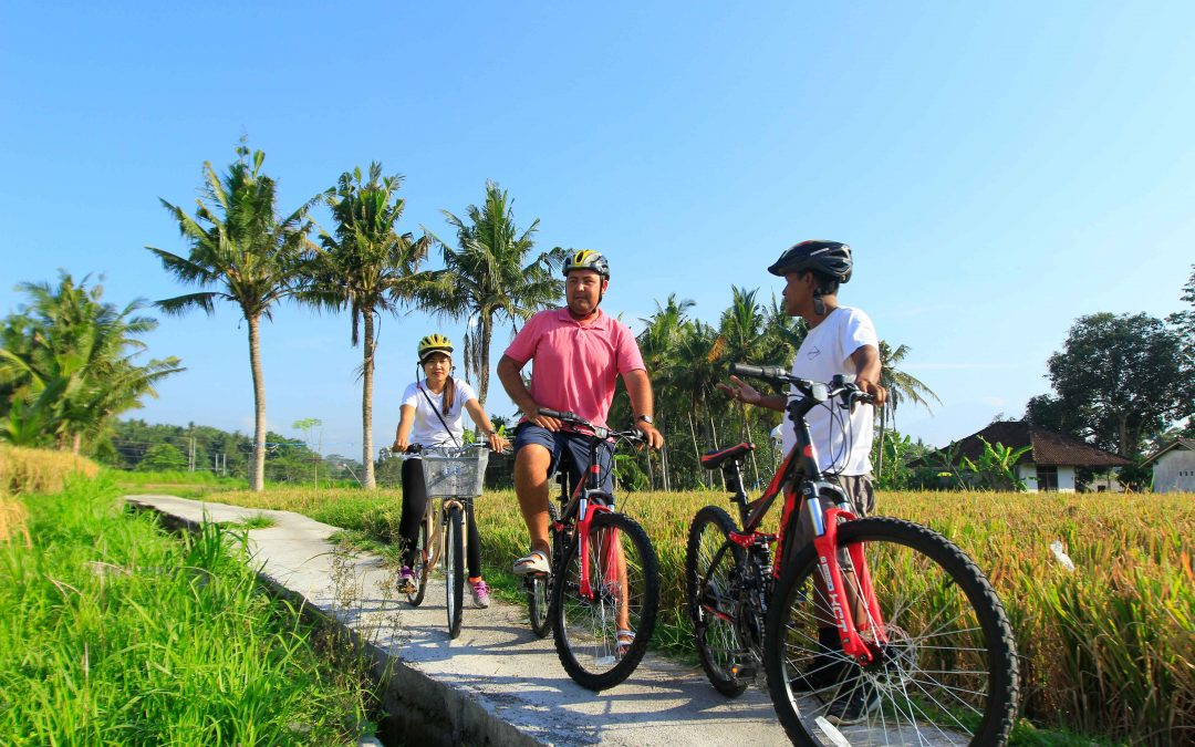 Cycling Around the Village and Wine Testing Tour in Keramas